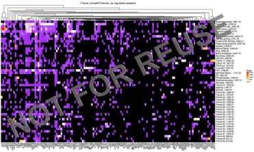 compBio_heatmap_example
